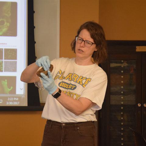 Clarke University Biology Program Instructor
