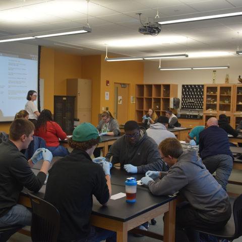 In class learning for students in Clarke University Biology Degree Program
