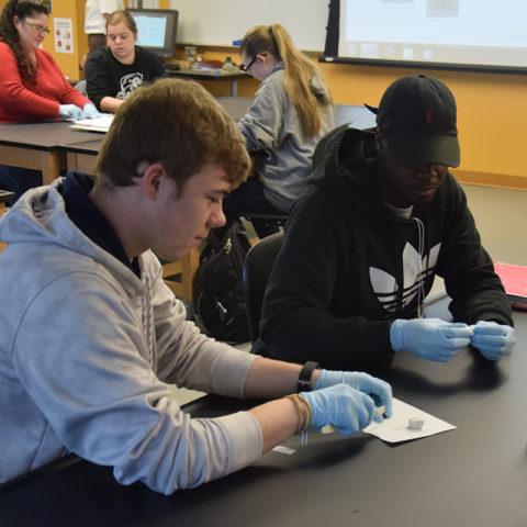 Clarke University Biology Degree Students Studying