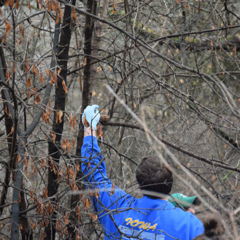 Clarke University environmental science students working in the field