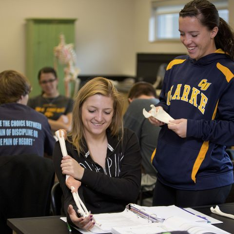 Biology students at Clarke University working together