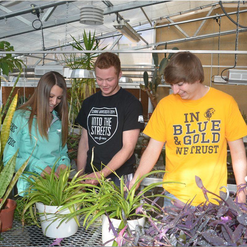 Clarke University Environmental Studies Green House