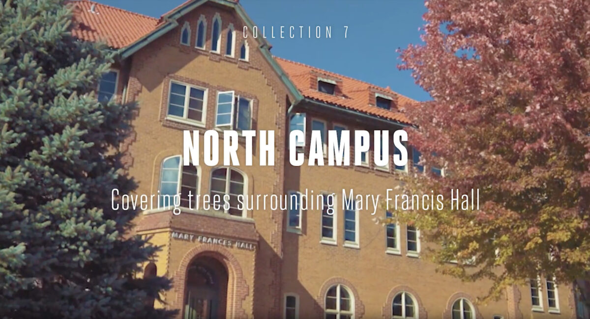 North Campus Tree Tour