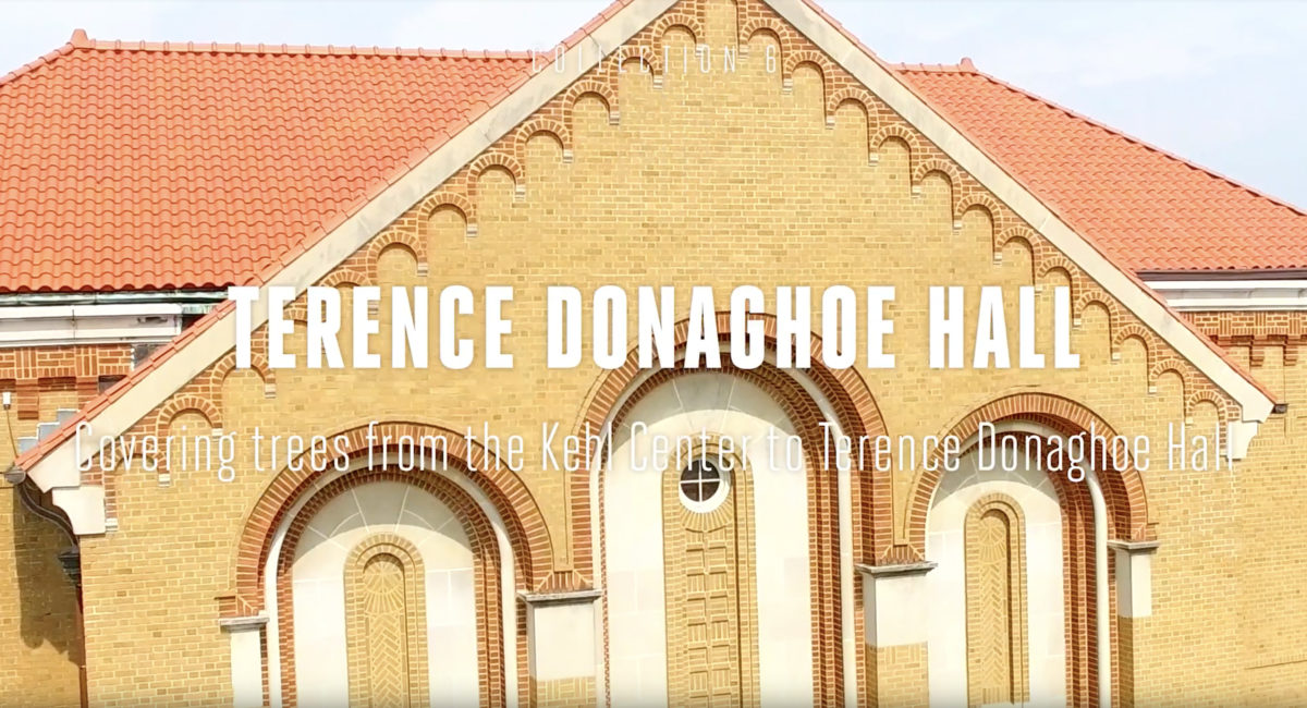 Terence Donaghoe Hall Tree Tour